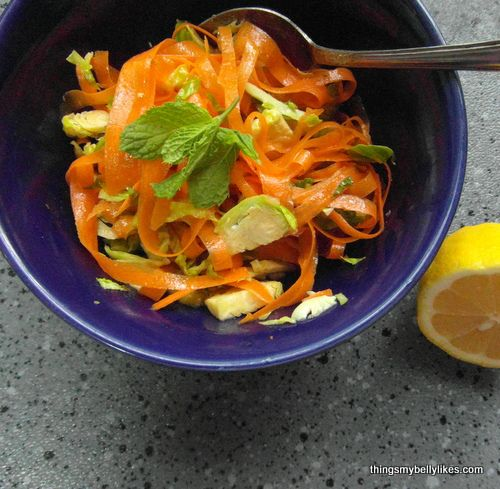 peanut carrot and cabbage slaw asian cabbage mango slaw pasilla chile ...