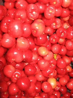 An AWSOME recipe for sour cherry jam - perfect for gift giving (or ...