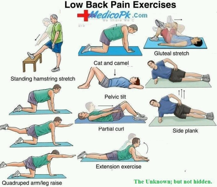 Low Back Pain Exercises | Health & Fitness | Pinterest Lower Back Stretches For Pain