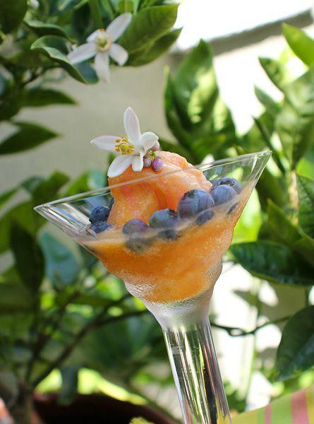 nectarine prosecco sorbet, peach sorbet, bellini, bellini sorbet