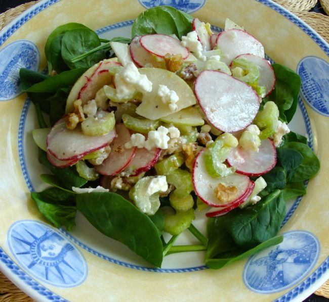 Celery Radish Apple Winter Salad with Walnuts and Feta plus 3 pages of ...