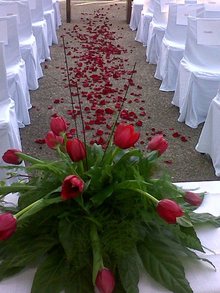 Decoracion Bodas Civiles ~ Ceremonia donde el protagonista fue el tulip?n rojo