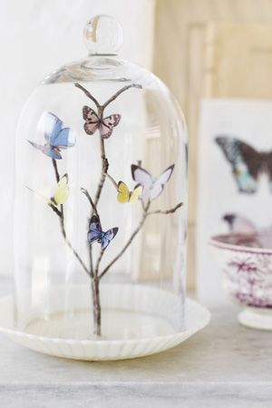 brides of adelaide magazine - butterfly themed wedding - spring wedding - purple wedding - butterfly - butterflies - table centrepiece