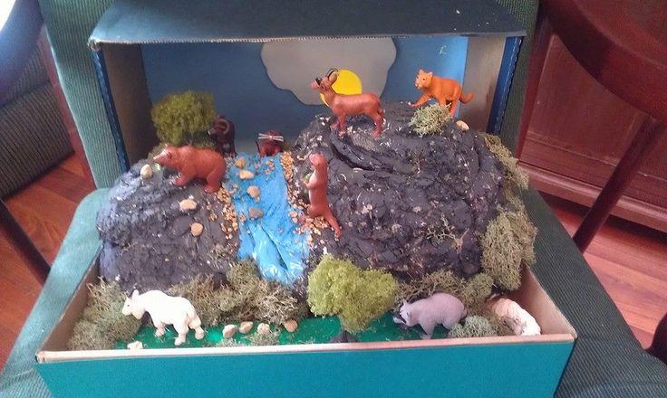 3rd Grade Project - Mountain Habitat Diorama | Education | Pinterest