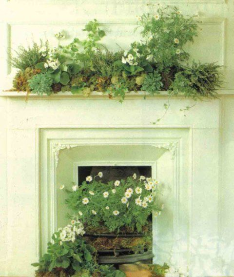 Unused Fireplace Decorating Ideas Unused Fireplace Manolo For The