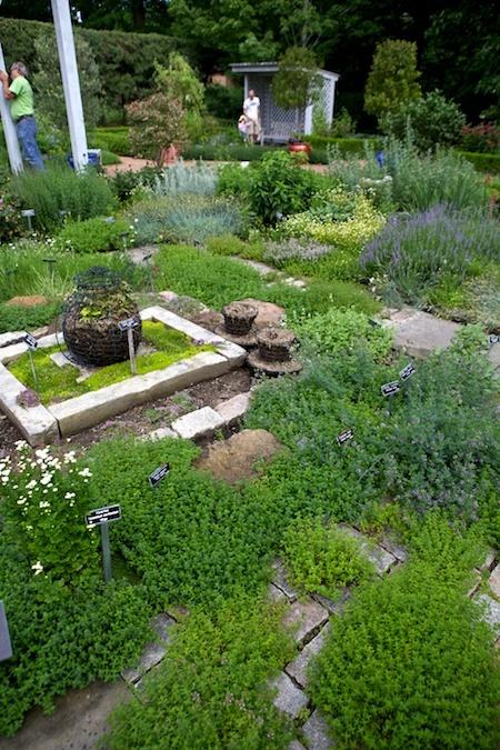 Succulent Rock Garden Ideas Photograph Found on