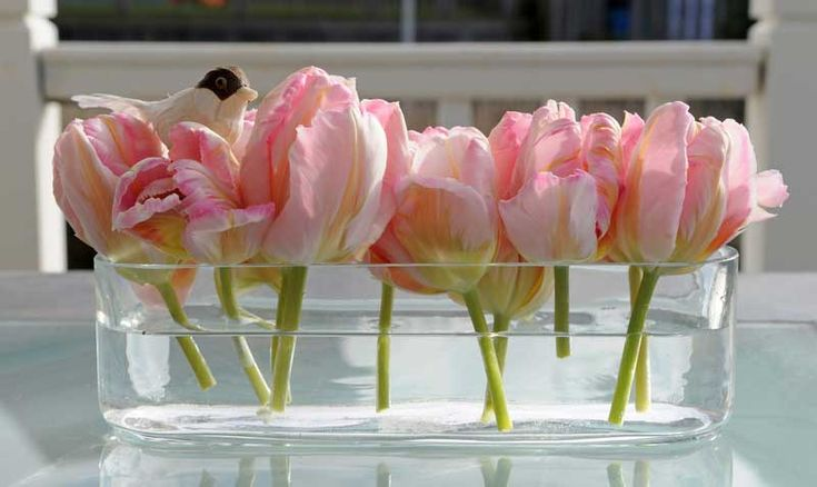 Floating tulips.  Very simple and pretty