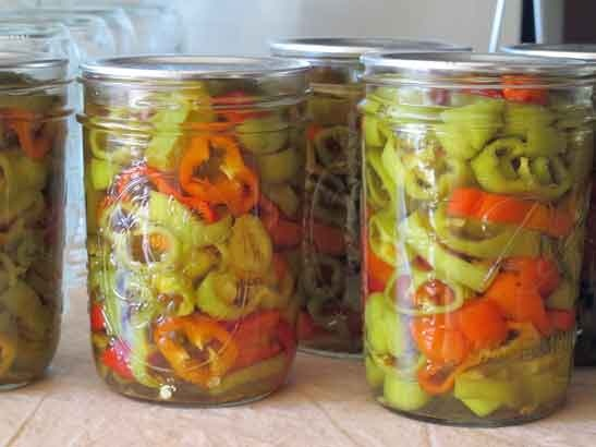 Hot Pepper Rings. This is a recipe for pickled pepper rings. The ...