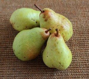 Making Pear Sauce | IC-Friendly, Gluten Free recipes | Pinterest