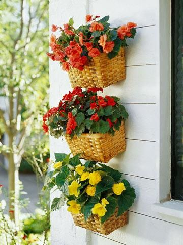 Basket trio    Inexpensive baskets make cheery flower containers. Tuck in plastic or terra-cotta pots, or line the baskets with landscape fabric. We used a variety of tuberous begonias, including 'Nonstop Apricot', 'Nonstop Bright Red' and 'Nonstop Yellow'