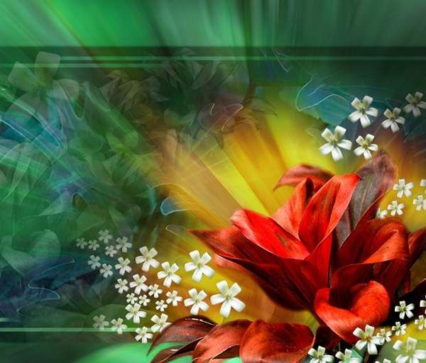 Lily Oasis   Zedge Images....   Pinterest