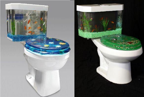 Toilet fish bowls fun furniture pinterest