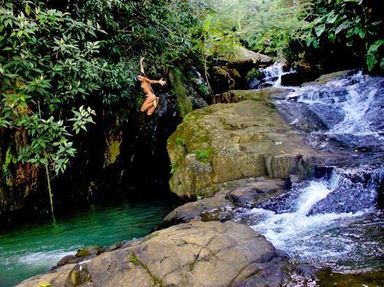 El Yunque National Park Pr Isla Del Encanto Puerto Rico Pinterest