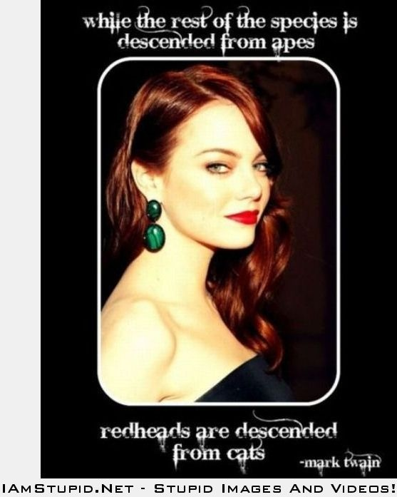 Funny Memes For Redheads : Redheads funny and stupid memes pinterest