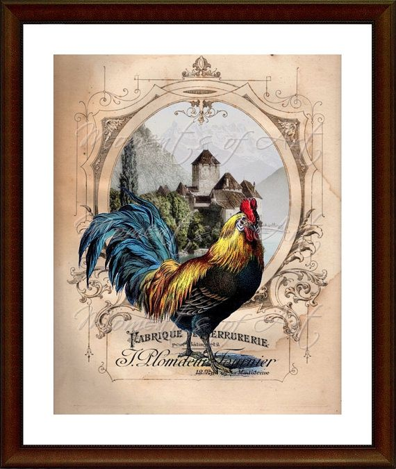 Rooster 8x10 Print Kitchen Art Country Decor French Chateau Rooster I