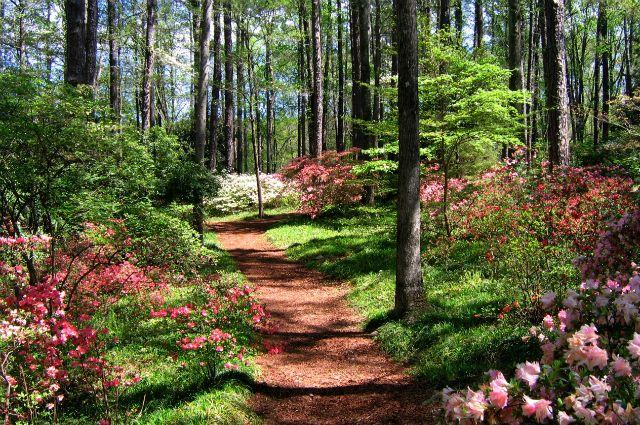 Callaway gardens pine mountain ga places i d like to - Callaway gardens pine mountain georgia ...