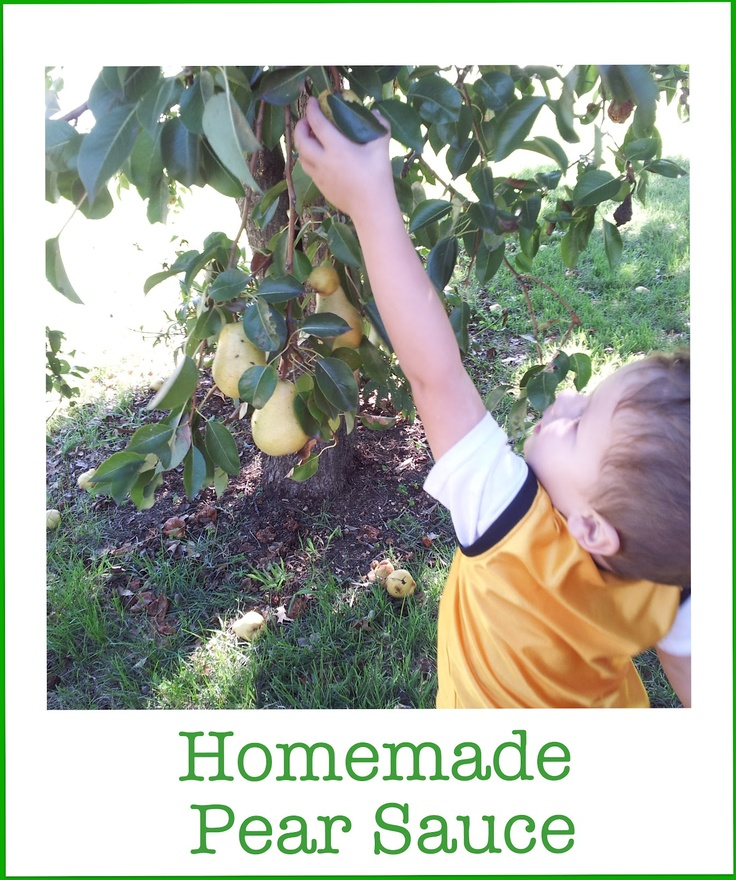 Homemade Pear Sauce | Feingold S1 Resources | Pinterest