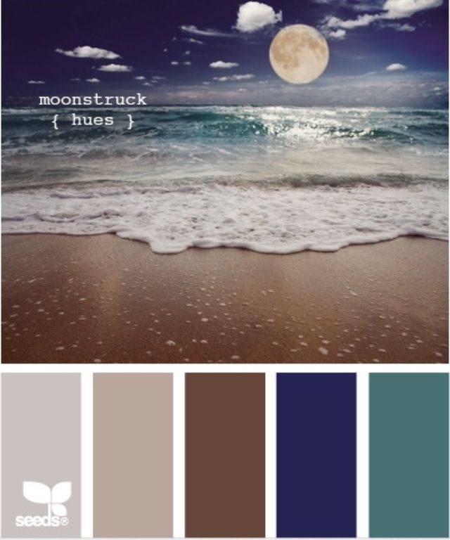 Color scheme color inspirations pinterest - Light blue brown color scheme ...