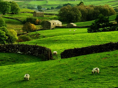 Spring Green, Swaledale, Yorkshire, England  photo via agrarian