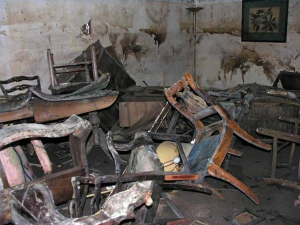 how to get rid of black mold in the basement
