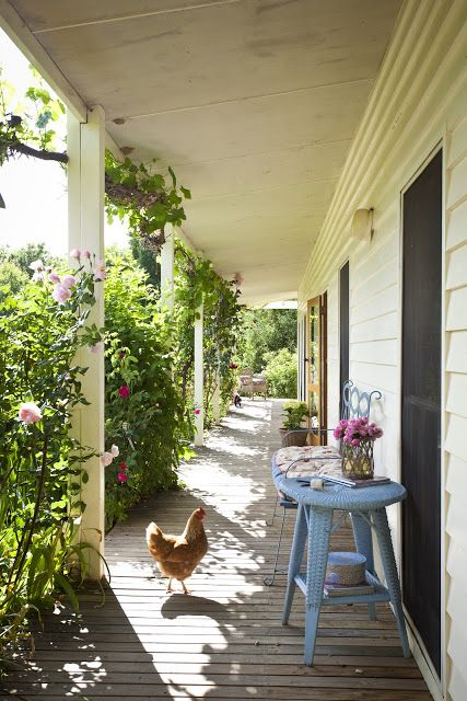 Beautiful south chicken coops on the front porch for Pictures of beautiful front porches