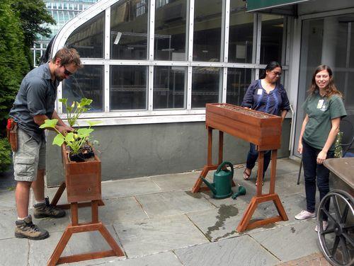 Inside Urban Green: New Sub-irrigated Window Box Planters at Brooklyn Botanic Garden