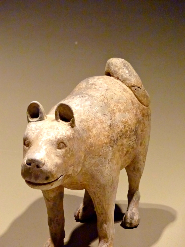 Ancient Chinese dog statue. Could this be the ancestral pug?