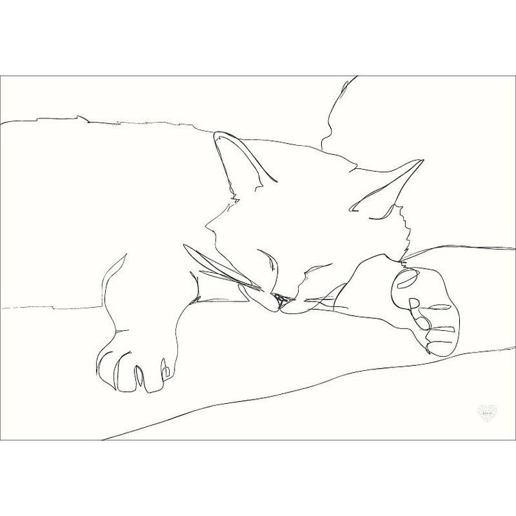 Continuous Line Art : Continuous line drawing portrait of your pet