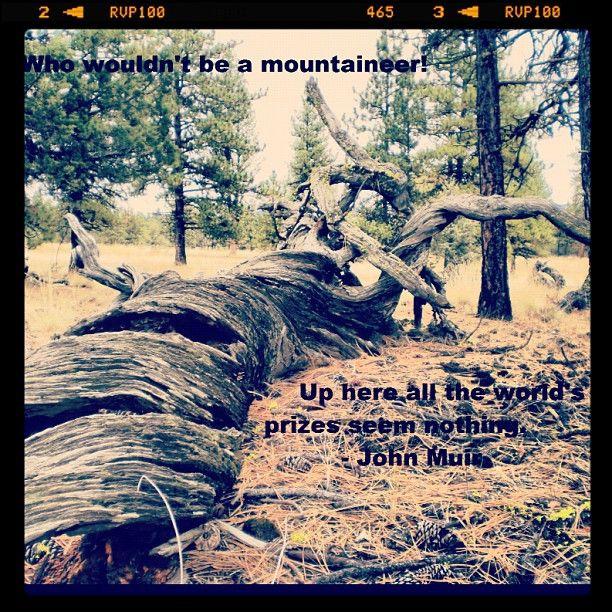 Yosemite John Muir Quotes On. QuotesGram