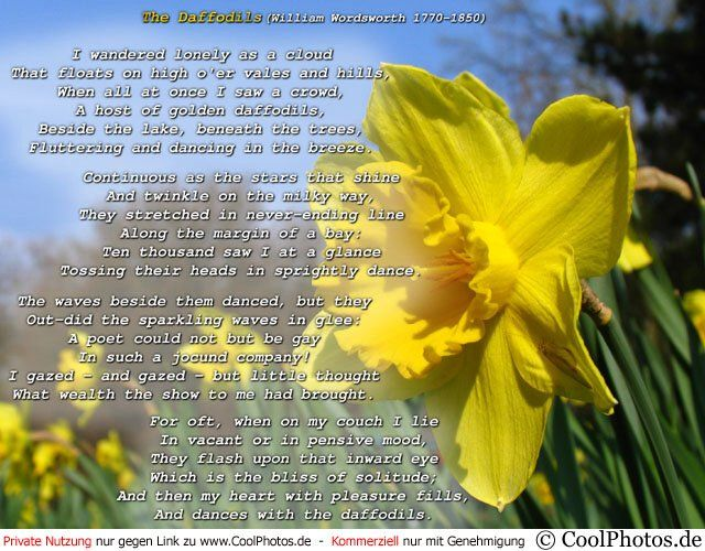 william wordsworth poem wandered lonely cloud I wandered lonely as a cloud that floats on high o'er vales and hills, when all at once i saw a crowd, a host, of golden daffodils beside the lake, beneath the trees, william wordsworth.