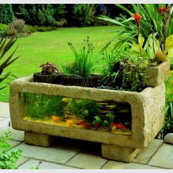 Fish tank garden ideal for my garden pinterest for Water garden fish tank