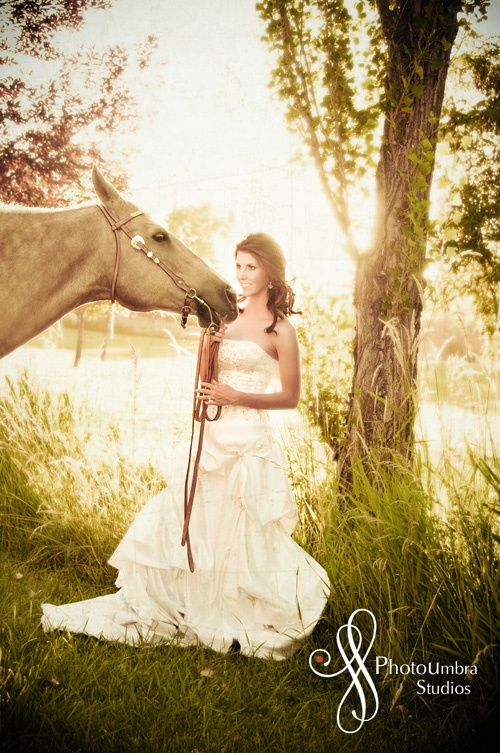 Dreamy bride and horse photo