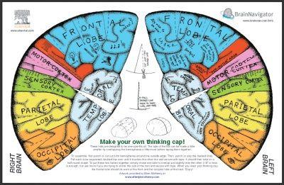 brain hemisphere hat from elsevierdirect | Crafty | Pinterest