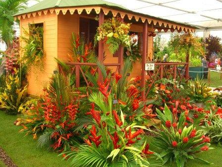 Flower show Tropical Garden Pinterest