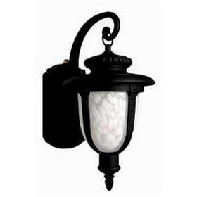 Outdoor light fixtures with dusk to dawn