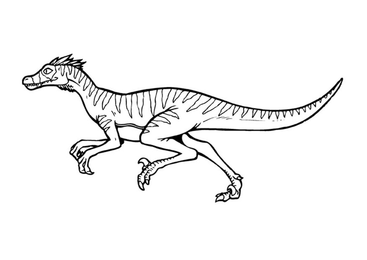 dinosaur coloring pages velociraptor sounds - photo#2