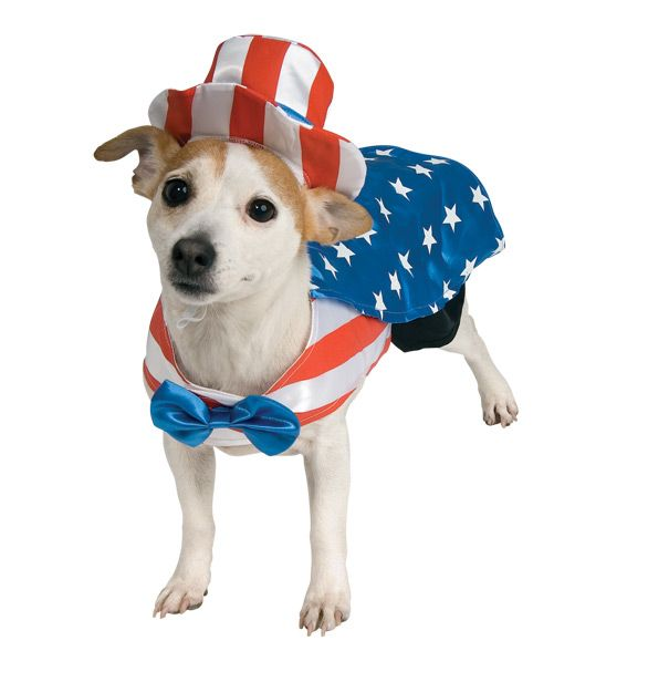 4th of july dog pictures