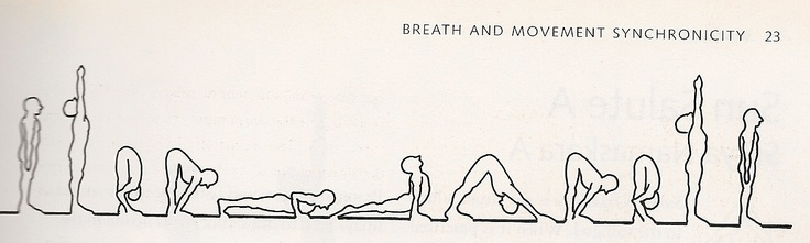 The Sun Salutation is the heartbeat of yoga. - Namaste.