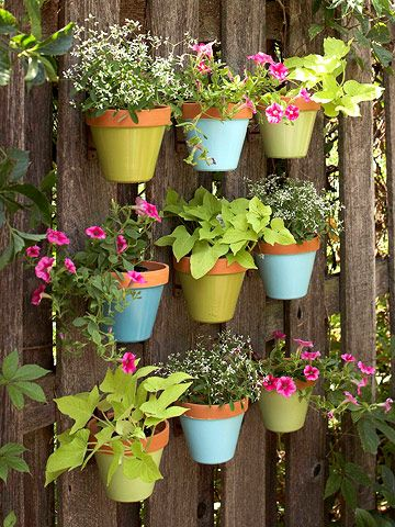 Attach plant hanger hooks to a wood fence and insert pots planted with tough annuals, such as 'Diamond Frost' euphorbia, 'Marguerite' sweet potato vine, and pink 'Supertunia Vista Fuchsia' petunia, to create a wall of living color. Coordinate the plantings by repeating colors in the painted pots and by using a limited palette of plants.