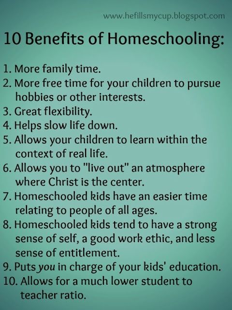 homeschooling and its advantages and disadantages The advantages and disadvantages of home schooling so that you would love to home school your son or daughter the advantages and disadvantages of home schooling.