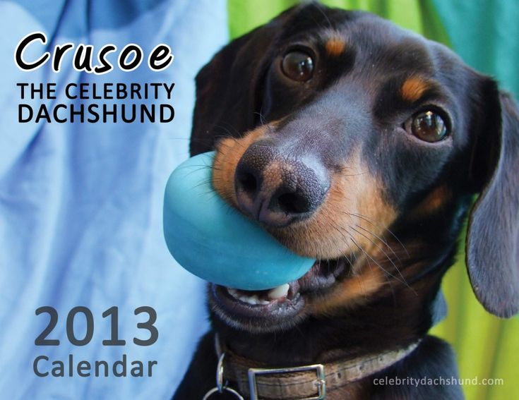 Crusoe's New 2018 Calendar Collection! - YouTube