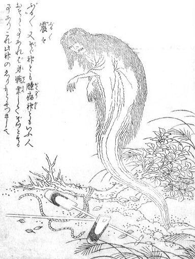 鳥山石燕の画像 p1_7