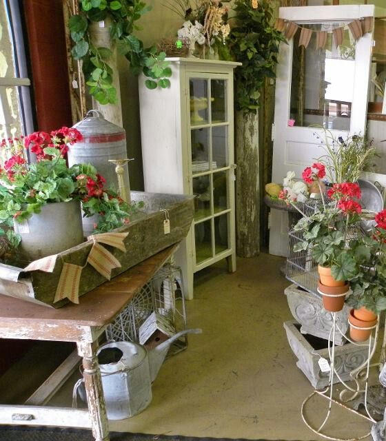 Geraniums Garden Decor Pinterest