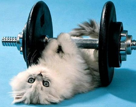 Strength training is important.