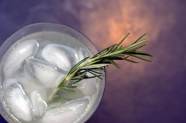 rosemary gin fizz by sassyradish, via Flickr