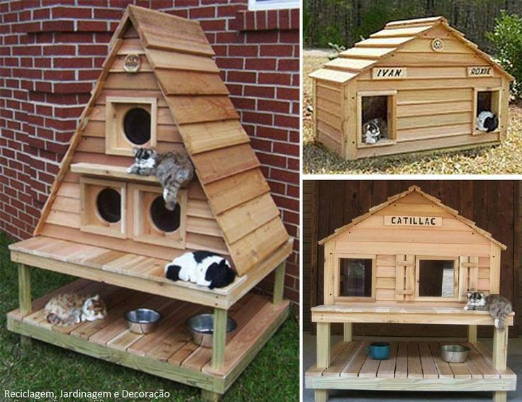 Cat and dog house ideas pets pinterest - Plan niche pour chat exterieur ...