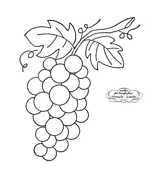 Pin Grape Coloring Page On Pinterest