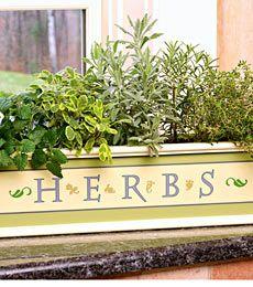 Love herbs!