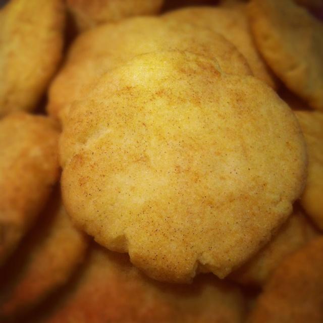 Mexican cinnamon & vanilla sugar cookies | Guilty Cookies | Pinterest