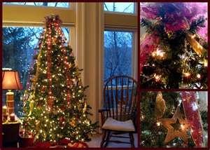 Professionally Decorated Christmas Trees O Christmas